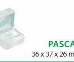pascal-3JPG-e1474830823379.jpg